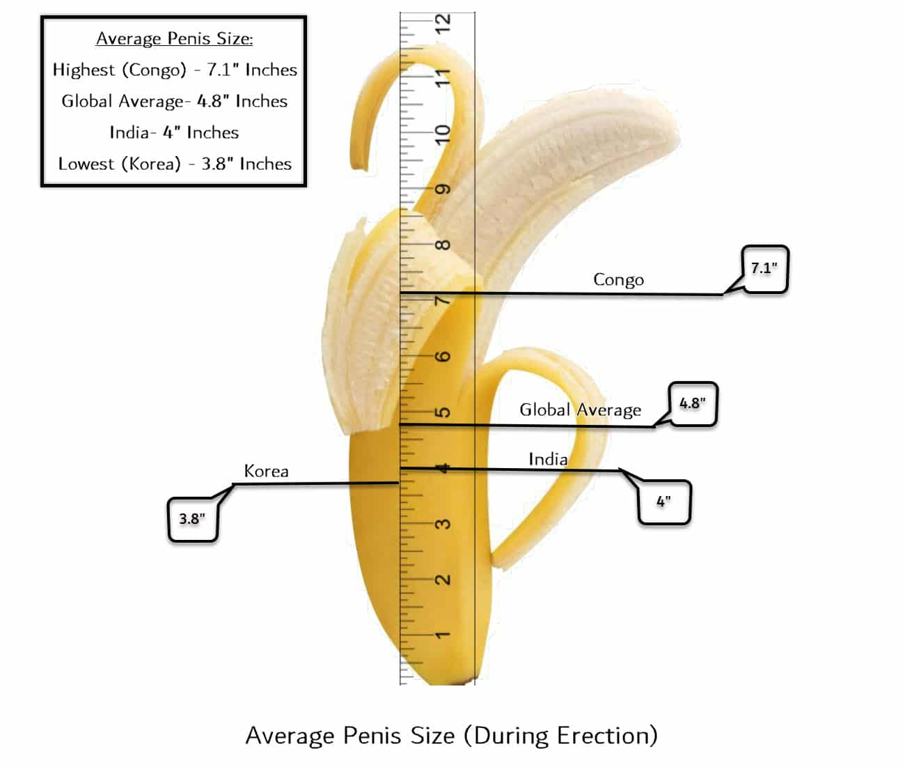 Penis question size